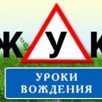 Жук - Логотип